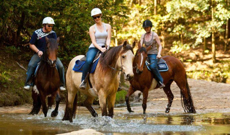 На лошадях в Анталии