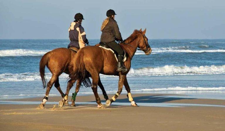 На лошадях в Белеке