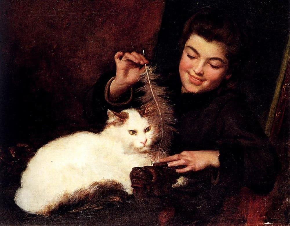 Кошка породы Ван