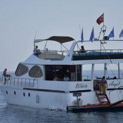 Яхты в Алании